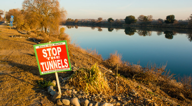 What would the Delta Say? Putting California's Twin Tunnels on Trial
