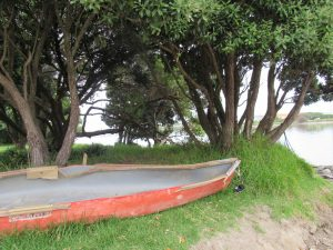 On the banks of the Whanganui River. (Photo Movement Rights)